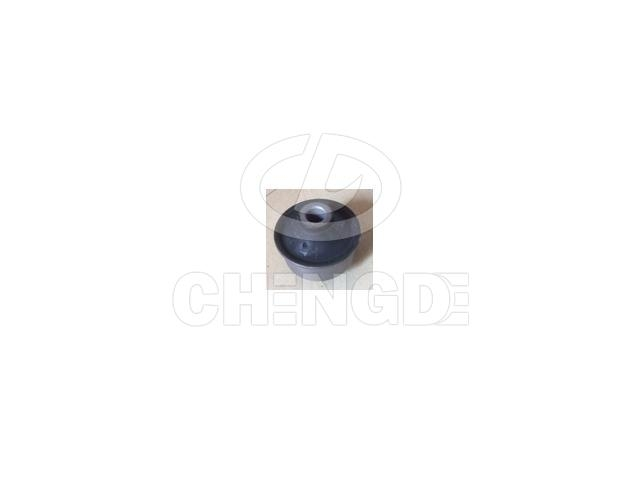 Suspension Bushing:4806859065       521128